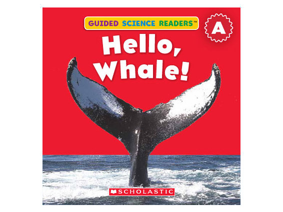 book cover: Hello Whale!