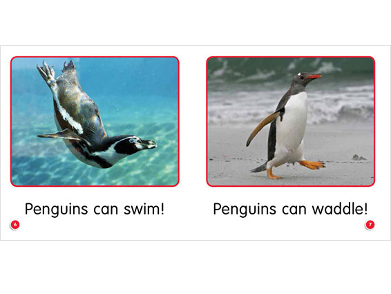 inner spread: Penguins Can Go