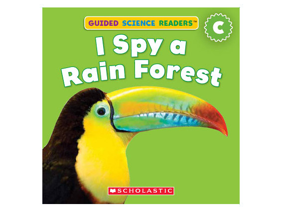 book cover: I Spy a Rain Forest