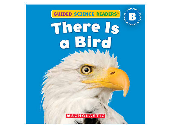 book cover: There Is a Bird